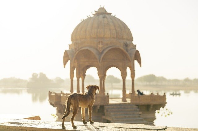 india trip package