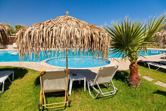 A group of lawn chairs sitting next to a palm tree